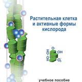 Растительная клетка и активные формы кислорода